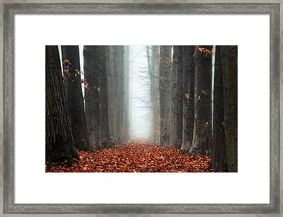 To Nowhere Framed Print