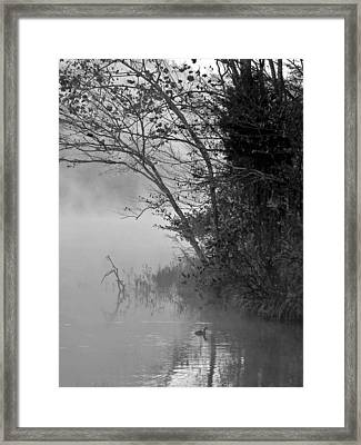 To The Mornings Framed Print