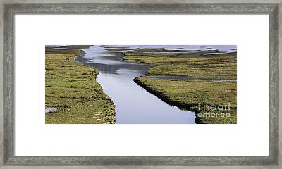 Tomales Marsh Framed Print