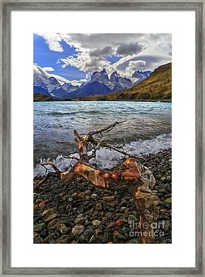 Torres Del Paine 17 Framed Print
