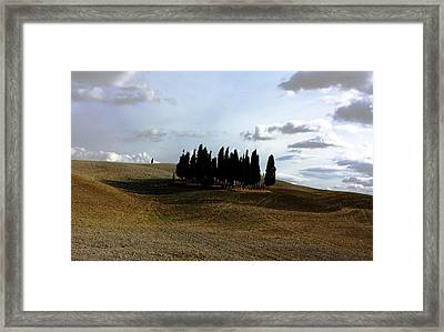 Toscana Framed Print by Pat Purdy