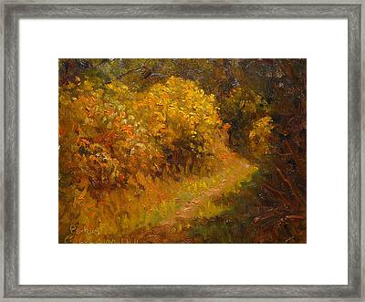 Track Through The Gorse Framed Print