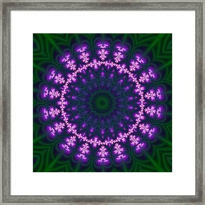 Transition Flower  Framed Print