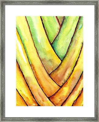 Travelers Palm Trunk Framed Print