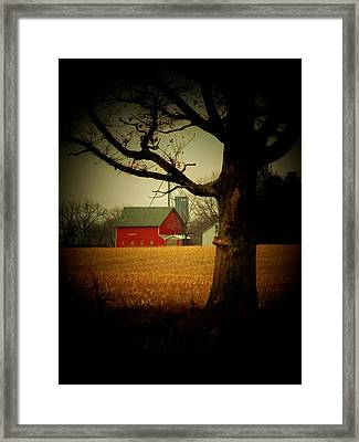Tree And Barn Framed Print by Michael L Kimble