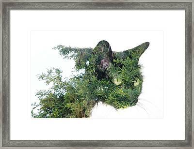 Tree Cat Framed Print