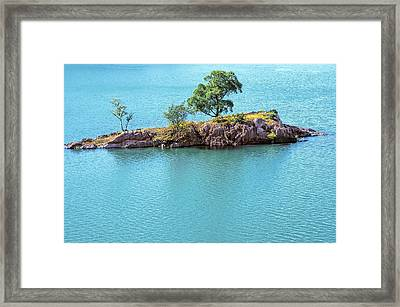 Tree Island Framed Print by Svetlana Sewell