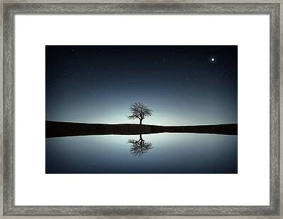 Tree Near Lake At Night Framed Print by Bess Hamiti