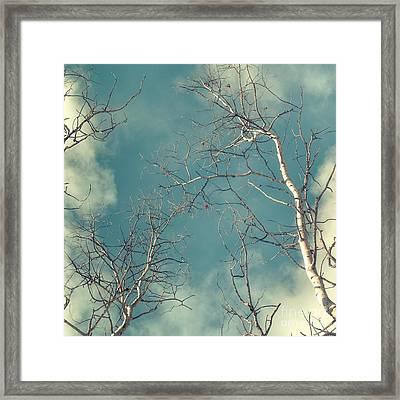 Tree Tops 4 Framed Print by Priska Wettstein