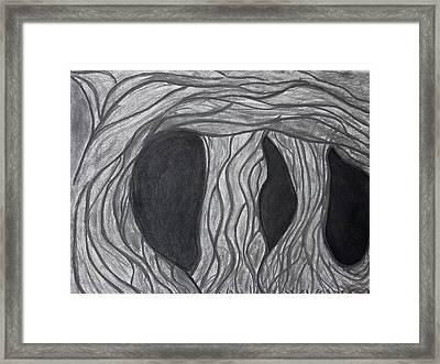 Trees Framed Print by Marsha Ferguson