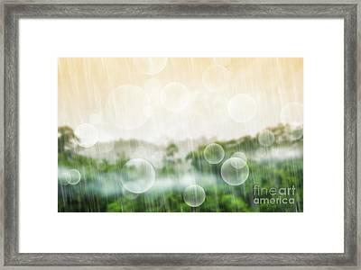 Tropical Forest Framed Print