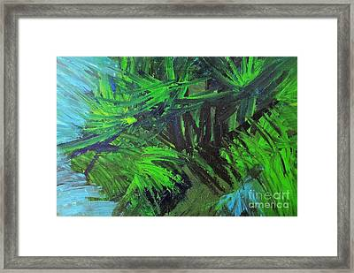 Tropical Paradise Framed Print by Shelly Wiseberg