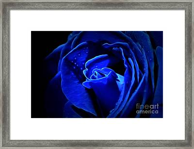 True Blue Framed Print by Krissy Katsimbras