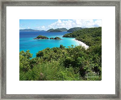 Framed Print featuring the photograph Trunk Bay by Carol  Bradley