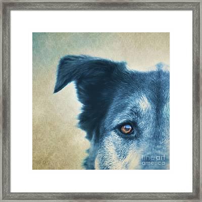 Trust Framed Print by Priska Wettstein