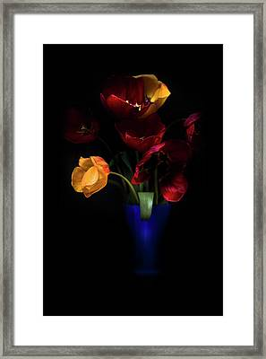 Tulips  Framed Print by Ivan Vukelic