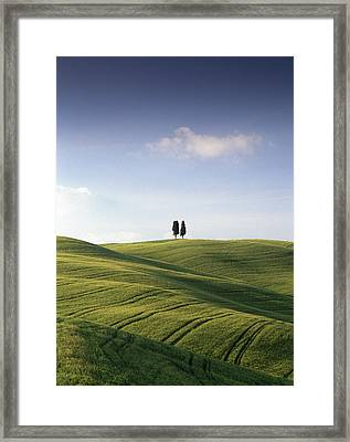 Twin Cypresses Framed Print by Michael Hudson