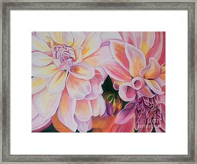 Two Dahlias Framed Print by Lucinda  Hansen