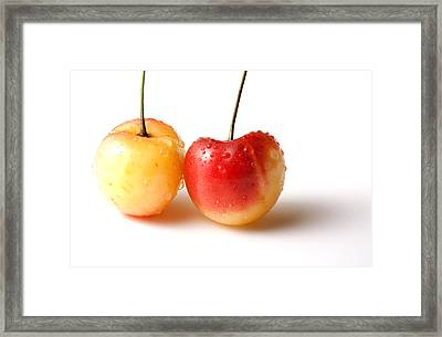 Two Rainier Cherries Framed Print by Blink Images