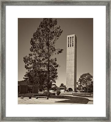 U C S B Campus Framed Print by Mountain Dreams