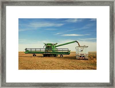 Unloading Chickpeas Framed Print by Todd Klassy