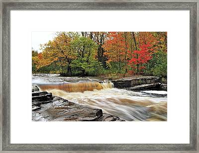 Unnamed Falls Framed Print by Michael Peychich