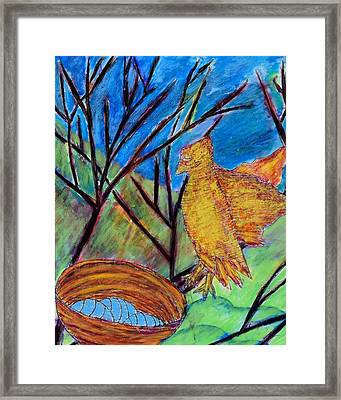 Watchful Waiting Framed Print by Ava Shelton