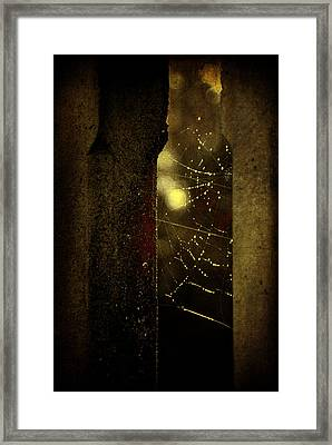 Untitled Framed Print by Valmir Ribeiro