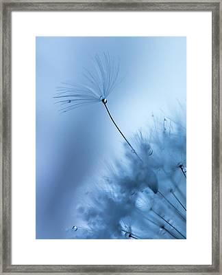 Upright Framed Print by Rebecca Cozart