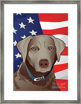 Usa Silver Lab Framed Print