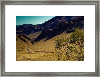 Valley Of Fire Nevada Framed Print by Patrick  Flynn