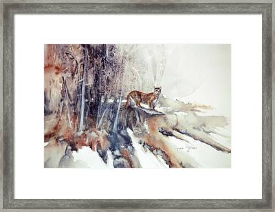 Vantage Point Framed Print by Lynne Parker