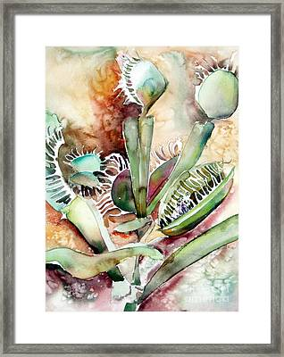 Venus Fly Trap Framed Print by Mindy Newman