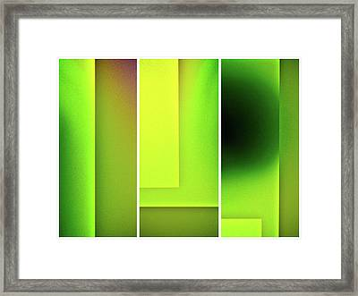 Verdure Framed Print by Tom Druin