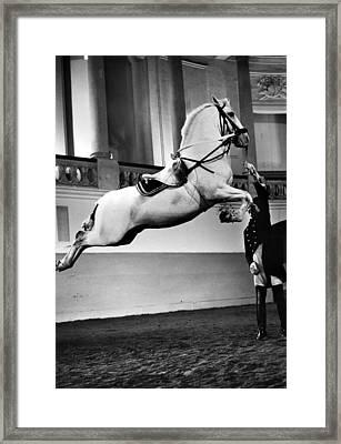 Vienna: Riding School Framed Print