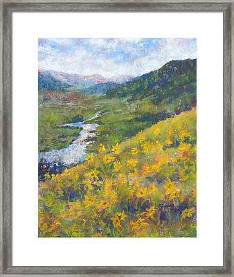 View From Baxters Gulch Framed Print