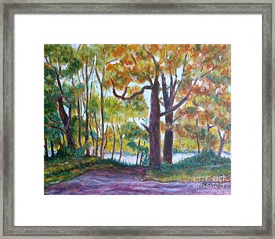 View From My Driveway Framed Print by Jan Bennicoff