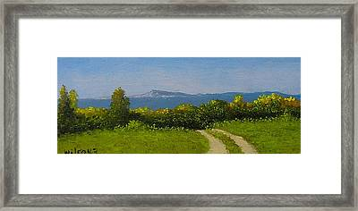 View From The Rim Framed Print by Fred Wilson