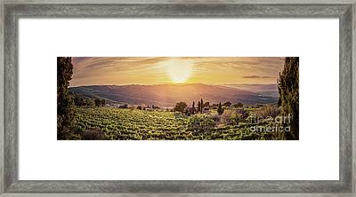 Vineyard Landscape Panorama In Tuscany, Italy. Wine Farm At Sunset Framed Print by Michal Bednarek