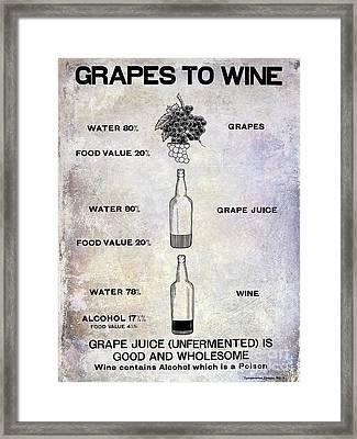 Vintage Grape To Wine Chart Framed Print