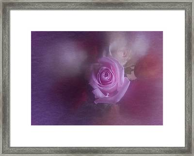 Framed Print featuring the photograph Vintage Pink Rose Feb 2017 by Richard Cummings
