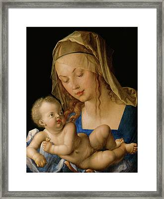 Virgin And Child With A Pear  Framed Print by Albrecht Durer