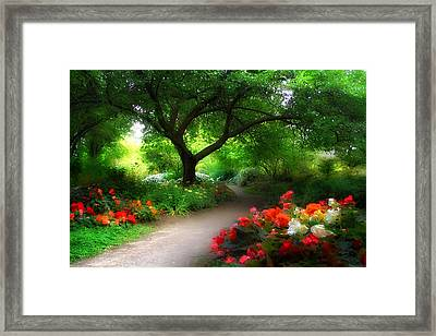 Vista Beyond Framed Print