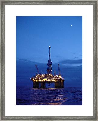Visund In The Twilight Framed Print