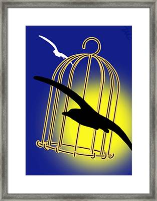 The Cage Framed Print by Tom Dickson