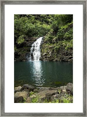 Waimea Falls Framed Print by Charmian Vistaunet