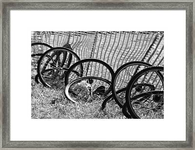Waiting For A Ride Framed Print by Lauri Novak