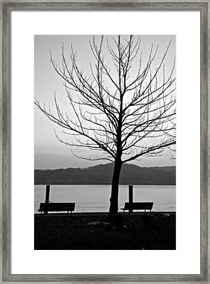 Waiting For The Sun Framed Print by Richard Pierce