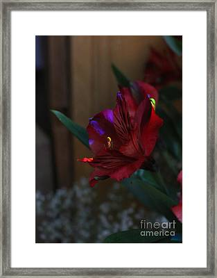 Framed Print featuring the photograph Waiting For You by Marie Neder
