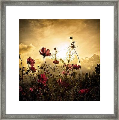 Watching The Sun Framed Print by Christian Marcel